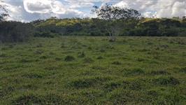 Areas de reserva legal Tocantins