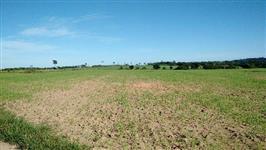 Fazenda 500 ha no MT