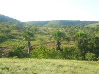 Fazenda em Formoso-MG com 158ha
