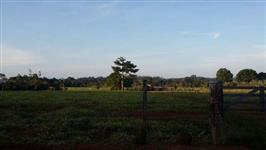 Grande terra de 600 hectares