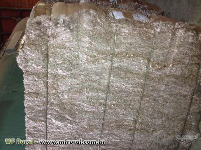 Ração de algodão casquinha -  Ração para Boi