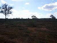 Fazenda Norte Tocantins - 1102 hectares  ( 227 Alqueirão )