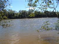 Fazenda Norte Tocantins - Goiatins ( 1074 hectares )  ( 222 alqueirão )