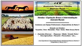 FAZENDA NORTE TOCANTINS - ( 1839 HECTARES)  (380 ALQUEIRÃO)