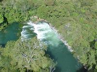 Área de Mata Atlântica -  Mato Grosso do Sul