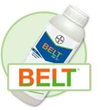 BELT (INSETICIDA)
