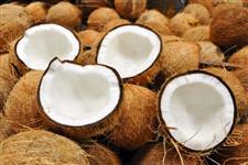 Coco seco 0.80 a unidade (80 reais o cento)