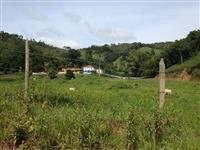 Vacas girolando Fazenda São Jose
