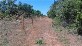 Fazenda 2700 hectares no Mato Grosso