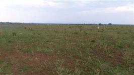 Fazenda de 2904 hectares no Tocantins Dupla Aptidão (Lavoura e Pecuária)