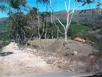 Fazenda Sul de Minas ILICÍNEA - MG
