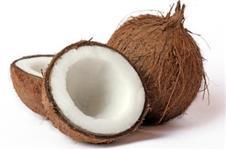Coco Seco e Coco Verde direto do Produtor