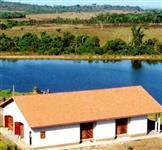 Fazenda de Gado com Pasto em Rondolândia MT