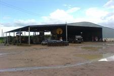 Fazenda de Eucalipto em Minas MG Temos fazendas de Eucalipto Pino em todo Brasil