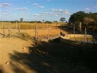Fazenda Região de Jaíba-MG (Ramalhudo)