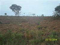 fazenda em joao pinheiro mg 40has plana