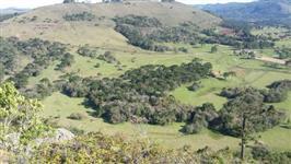 Fazenda de 1214 hectares em Lages SC