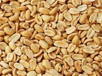 amendoim torrado banda