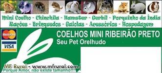 COELHOS MINI RIBEIR�O PRETO