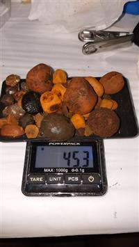 Pedras de Fel / Cálculos Biliar / Ox Gallstones