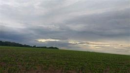 Fazenda em Bragança no Pará - Oportunidade