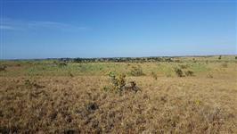 Vende-se Fazenda com 713 hectares, região do Bonfim