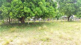 Vende-se Fazenda com 5400 hectares no Amajari, excelente para pecuaria e Agricultura