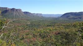 Fazenda 100 Alqueires GOIÁS - Reserva Legal, Compensaçao Ambiental ou Abertura-484 ha