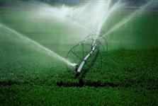 GEL DE PLANTIO (Cria um reservatório contínuo de água e nutrientes) FRETE GRÁTIS