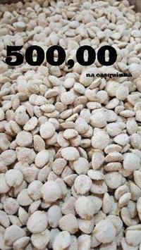 NOZ DA ÍNDIA R$500,00 O QUILO