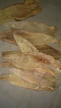 Grude de Peixes