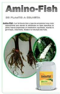 Amino-Fish
