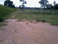 Procuro área para implantação de projeto de fruticultura irrigada em semi-árido