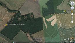 Sitio 100% plantado com 18.000 arvores de Seringueira em plena Produção