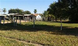 Fazenda a venda no pantanal Matogrossense
