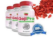 Goji Pro 500mg 60 capsulas Distribuidor de Fábrica
