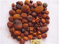 Compramos e Vendemos Pedra de Fel (Cálculo Biliar Bovino, Ox Gallstone)