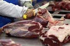 Temos todos os tipos de carnes para exportação ( Ave,Bovina e Suina )
