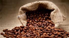 Temos café para exportação