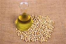 Temos óleo de soja para exportação