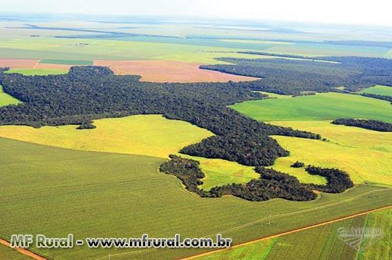 Crédito Rural para compra de Terra, equipamentos agrícolas, reformas e outros.