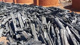 Carvão especial para churrasco