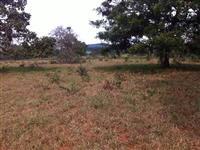 Fazenda toda Plana de 14 Alqueires