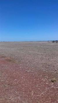 Fazenda no Sul do Pará