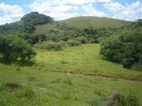Fazenda Pecuária de Leite a 55 Km de Barbacena
