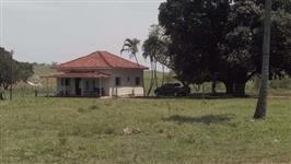 Fazenda de 642 ha em Presidente Bernardes-SP , terra de excelente qualidade