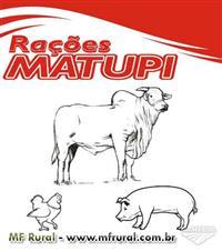 RAÇÃO MATUPI
