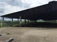 Barracões para Free Stall
