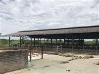 Otimas Oportunidades Barracoes e equipamentos para o setor leiteiro