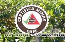 Fazenda de café Arábica em Bom Sucesso-MG